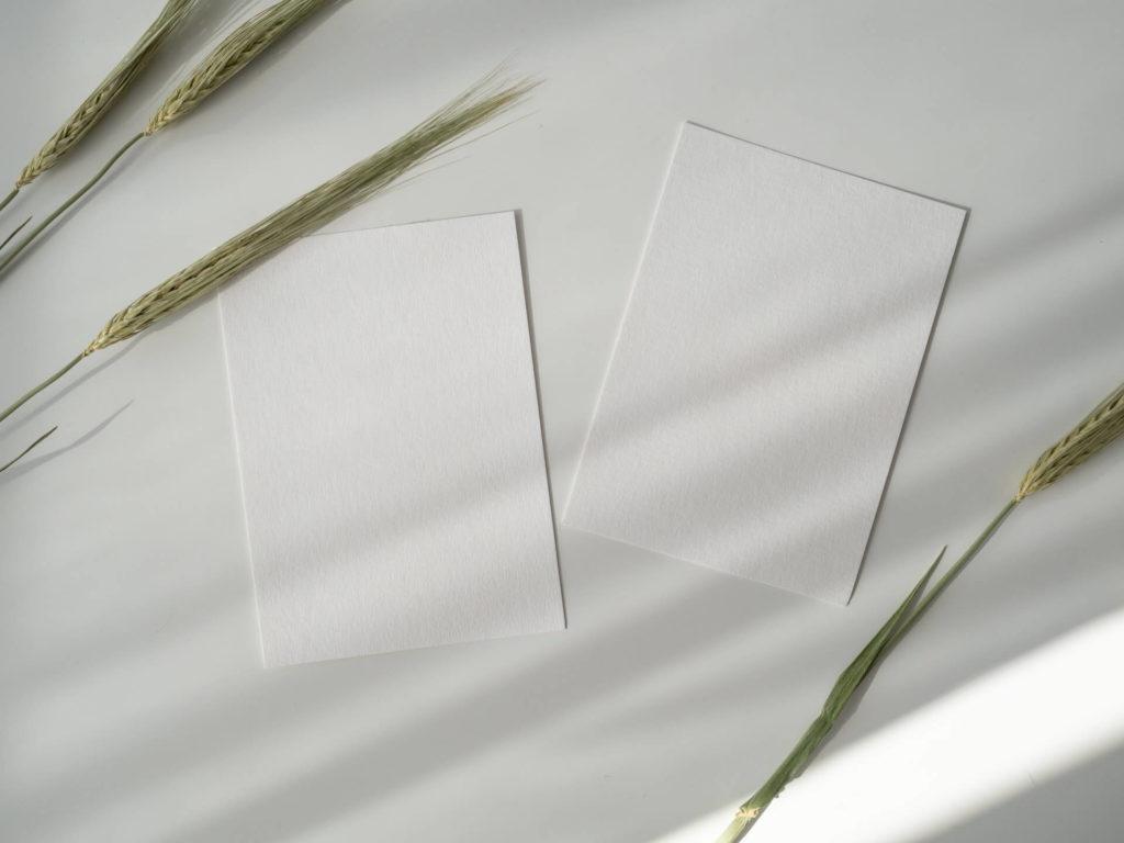 révolutionner le monde grâce à l'industrie du papier.